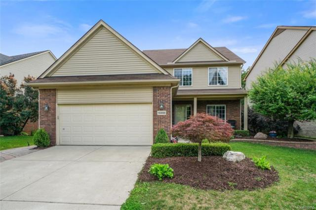16466 Westminister Drive, Northville Twp, MI 48168 (#218079984) :: RE/MAX Classic
