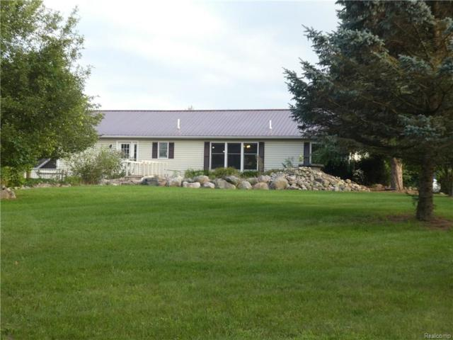 6285 Sober Road, Conway Twp, MI 48836 (MLS #218081864) :: The Toth Team