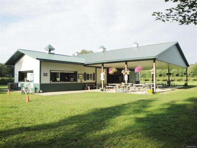 13240 Blueberry, Forest Twp, MI 48464 (#50100003765) :: Duneske Real Estate Advisors