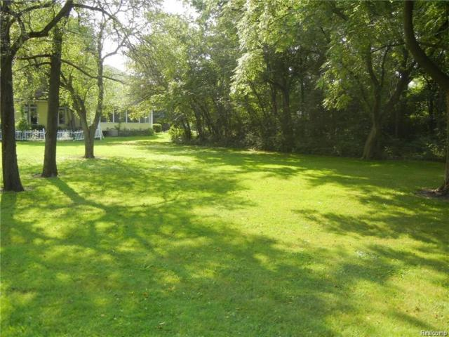Vacant West River Road, Grosse Ile Twp, MI 48138 (MLS #218082729) :: The Toth Team