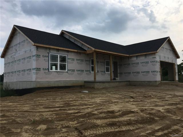 6040 Bowers Road, Imlay Twp, MI 48444 (#218083381) :: Duneske Real Estate Advisors