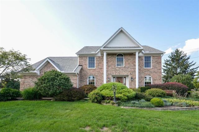 49382 Plum Tree Drive, Plymouth Twp, MI 48170 (MLS #543259619) :: The Toth Team