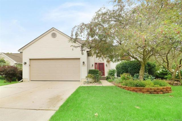 344 W Woodland Drive, Saline, MI 48176 (#543259831) :: Duneske Real Estate Advisors
