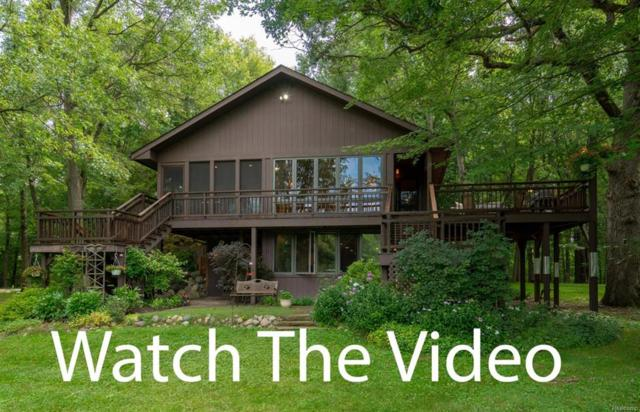 14991 Harr Road, Waterloo Twp, MI 48118 (#543259858) :: The Buckley Jolley Real Estate Team