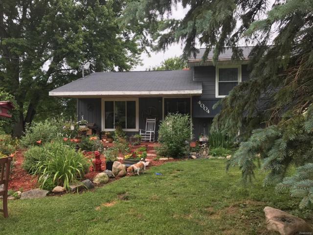 4004 Trumble Road, Leoni Twp, MI 49201 (#543259885) :: The Buckley Jolley Real Estate Team