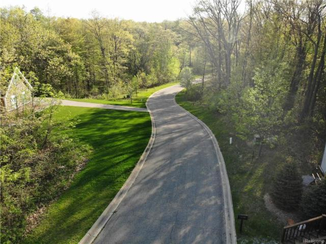 11978 Scenic Valley, Springfield Twp, MI 48350 (#218084789) :: The Buckley Jolley Real Estate Team