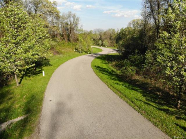 11852 Scenic Valley, Springfield Twp, MI 48350 (#218084795) :: The Buckley Jolley Real Estate Team