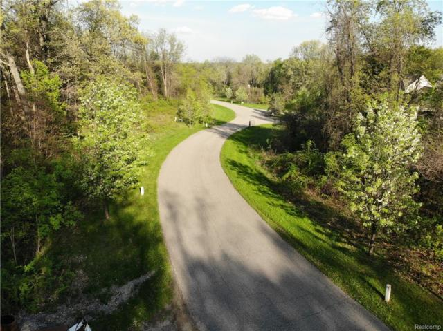 11999 Scenic Valley, Springfield Twp, MI 48350 (#218084797) :: The Buckley Jolley Real Estate Team