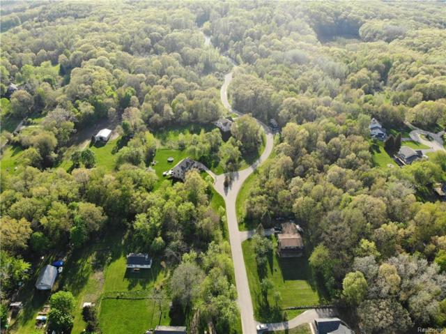 11768 Scenic Valley, Springfield Twp, MI 48350 (#218084817) :: The Buckley Jolley Real Estate Team