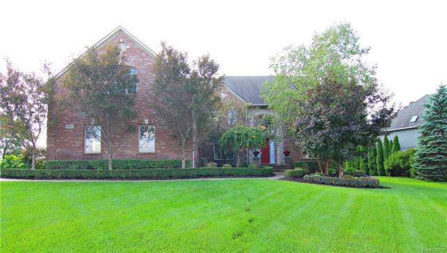 23787 Point O Woods Court, Lyon Twp, MI 48178 (#218085459) :: The Buckley Jolley Real Estate Team