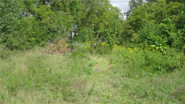 0000 Heidelberg Lane, Green Oak Twp, MI 48189 (#218085531) :: Duneske Real Estate Advisors