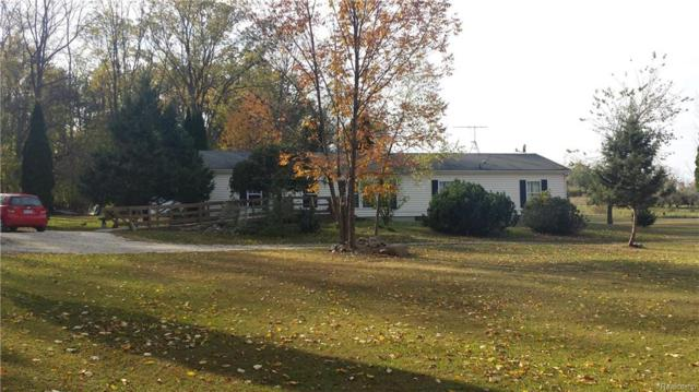 5790 Van Dyke Road, Almont Twp, MI 48003 (#218085545) :: The Buckley Jolley Real Estate Team