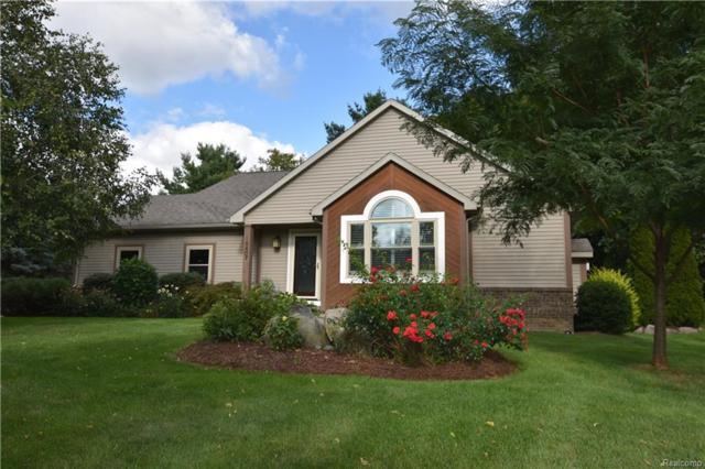 16407 Horseshoe Trail, Linden, MI 48451 (MLS #218085788) :: The Toth Team