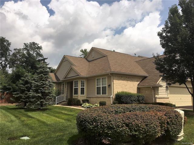 1337 Hollins Hall Lane, Troy, MI 48085 (#218085830) :: Duneske Real Estate Advisors