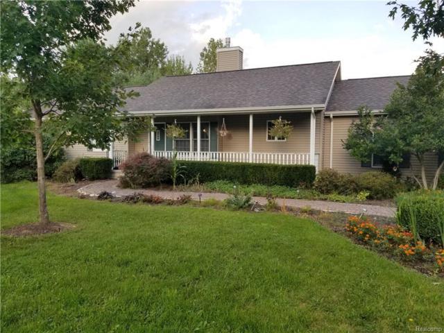 1750 N Lake Pleasant Road, Arcadia Twp, MI 48412 (#218086453) :: The Buckley Jolley Real Estate Team