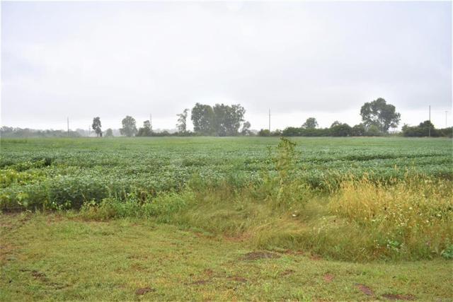 13660 N Sanford, York Twp, MI 48160 (#543260035) :: Duneske Real Estate Advisors