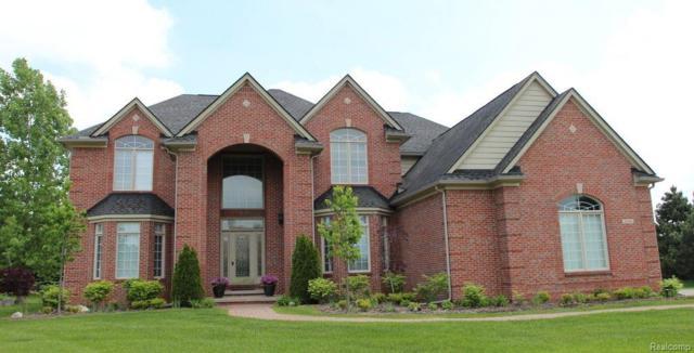 8206 Brookstone Lane, Independence Twp, MI 48348 (#218087330) :: Duneske Real Estate Advisors