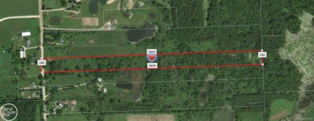 2946 Slattery Rd, Arcadia Twp, MI 48412 (#58031359230) :: RE/MAX Nexus