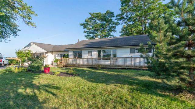 11965 Stony Creek Road, York, MI 48160 (#543260177) :: Duneske Real Estate Advisors