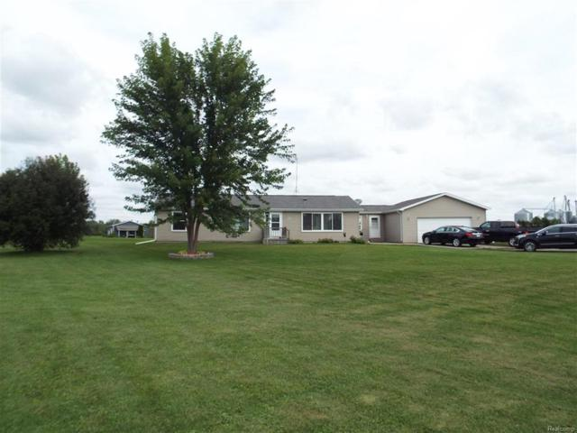 1035 E Birch Run, Taymouth Twp, MI 48417 (#50100004011) :: The Buckley Jolley Real Estate Team