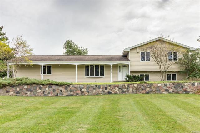 19693 W Old Us Highway 12, Sylvan, MI 48118 (#543260073) :: The Buckley Jolley Real Estate Team