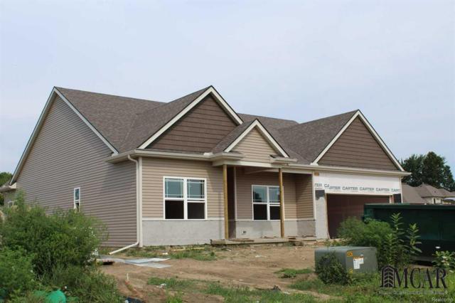 6749 N Summerway Ct, Lambertville, MI 48144 (#57021384999) :: Duneske Real Estate Advisors