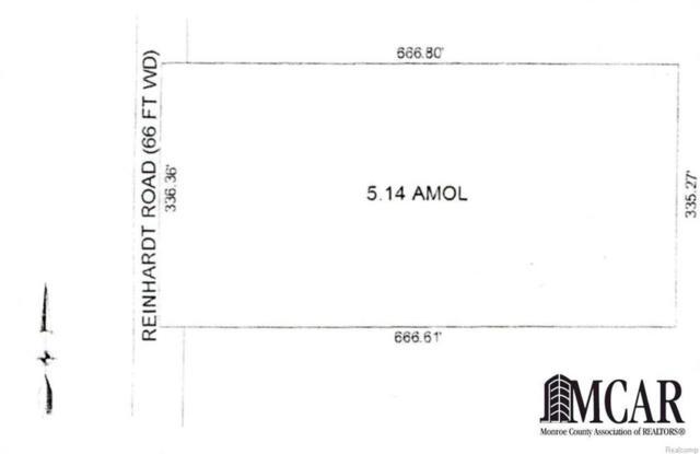 0 Reinhardt, Frenchtown Twp, MI 48162 (MLS #57021411622) :: The Toth Team