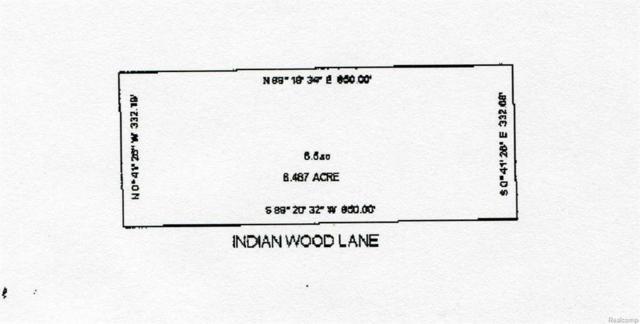 0 Indian Wood Ln, Bedford Twp, MI 48182 (#57021425016) :: Duneske Real Estate Advisors