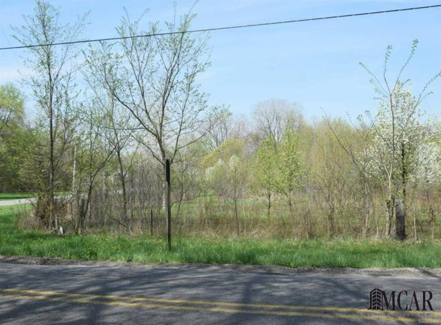 5200 State Line Road, Whiteford Twp, MI 49267 (MLS #57021433937) :: The Toth Team