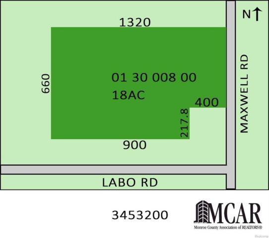 0 Maxwell Rd, Ash Twp, MI 48117 (#57021492022) :: Duneske Real Estate Advisors