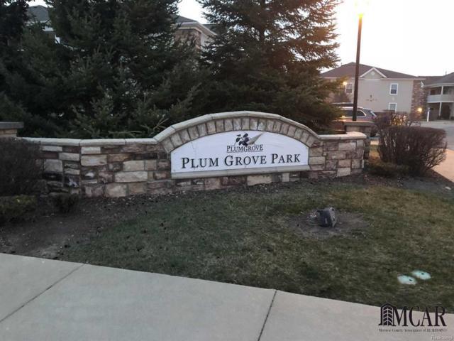 916 Plum Park Drive, Raisinville Twp, MI 48161 (#57021435102) :: Duneske Real Estate Advisors