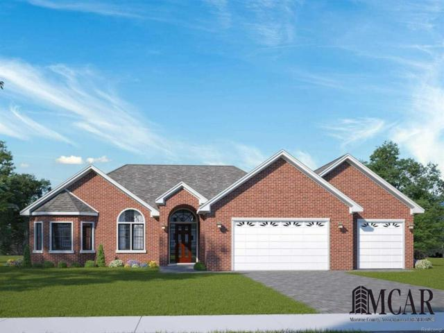 201 Pinnacle Blvd, Frenchtown Twp, MI 48162 (#57021464407) :: The Mulvihill Group