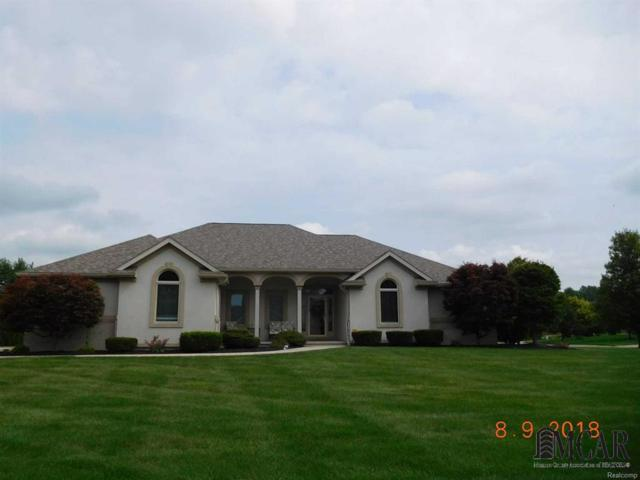 288 Pebble Beach Dr, Monroe, MI 48162 (MLS #57021490553) :: The Toth Team