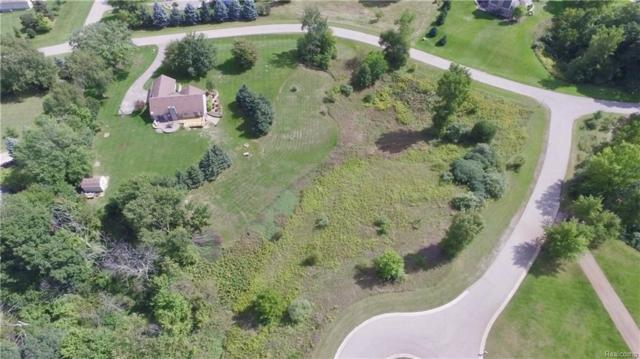 12648 Mandolin Court, Springfield Twp, MI 48350 (#218088999) :: Duneske Real Estate Advisors