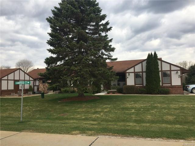12161 Shenandoah, Green Oak Twp, MI 48178 (#218089116) :: Duneske Real Estate Advisors