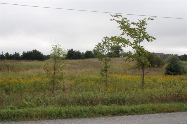 6300 Mast Road, Webster Twp, MI 48130 (#543260259) :: Duneske Real Estate Advisors