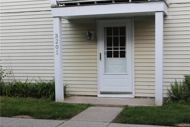 3201 Heatherstone Court Court #79, Orion Twp, MI 48360 (#218090080) :: Duneske Real Estate Advisors
