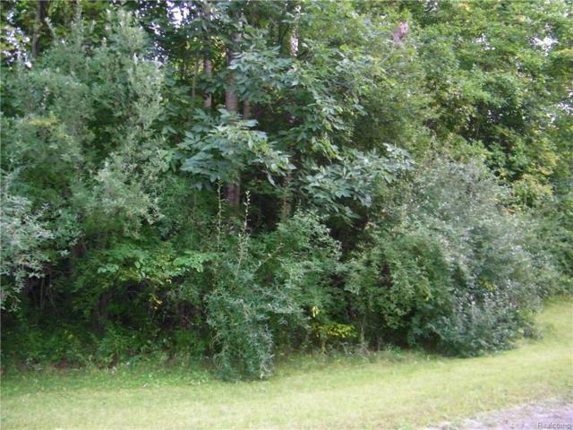 vacant Burning Tree Lane, Arcadia Twp, MI 48412 (#218090315) :: The Buckley Jolley Real Estate Team