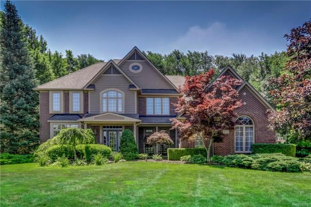10920 Stoney Point Drive, Green Oak Twp, MI 48178 (#218090602) :: The Mulvihill Group