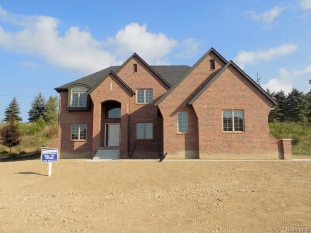 10508 Stoney Point Drive, Green Oak Twp, MI 48178 (#218090679) :: The Mulvihill Group