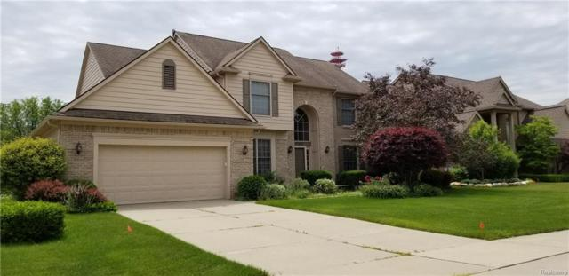 51245 W Hills Drive, Plymouth Twp, MI 48170 (#218090709) :: The Mulvihill Group