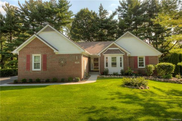 57236 Hidden Timbers Drive, Lyon Twp, MI 48178 (#218090781) :: The Buckley Jolley Real Estate Team