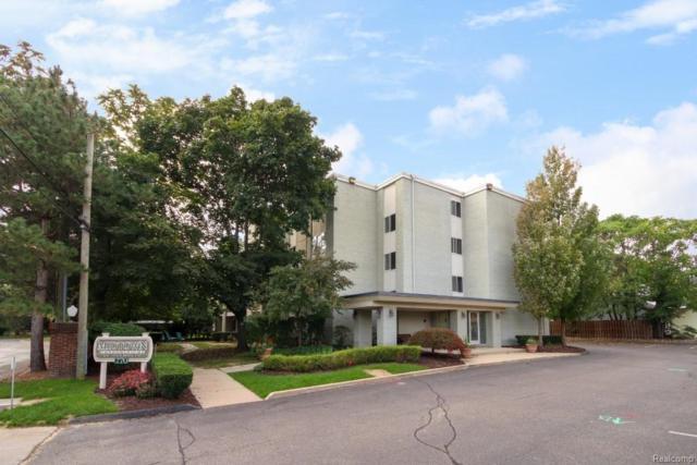 770 Deer Street #205, Plymouth, MI 48170 (#218091103) :: Duneske Real Estate Advisors