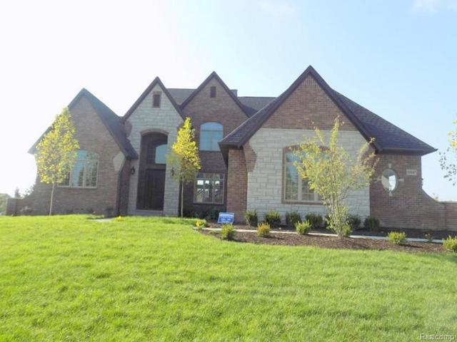 10547 Stoney Point Drive, Green Oak Twp, MI 48178 (#218091221) :: The Buckley Jolley Real Estate Team