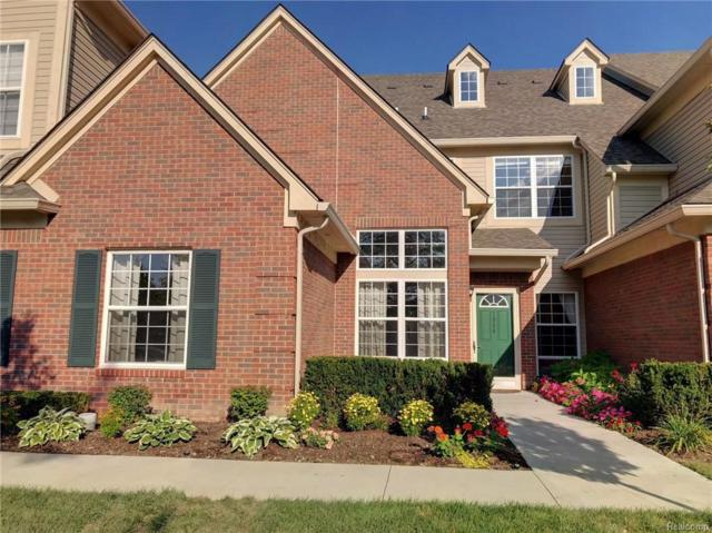 7904 Marie Drive, Shelby Twp, MI 48316 (#218091279) :: Duneske Real Estate Advisors