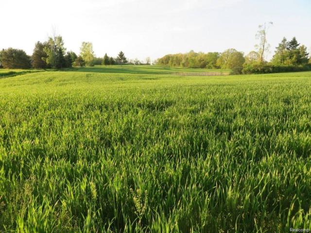 PARCEL J-VACANT LAND Creekwood Drive, Mundy Twp, MI 48439 (#218091280) :: Duneske Real Estate Advisors