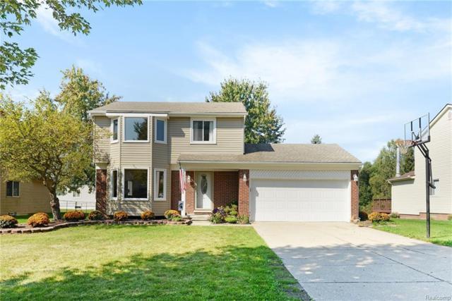22269 Brookfield Drive, South Lyon, MI 48178 (#218091366) :: Duneske Real Estate Advisors