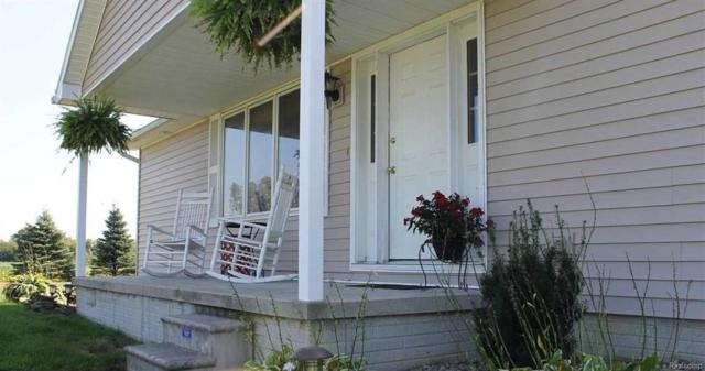 11625 Trost, Raisinville Twp, MI 48140 (#57031360341) :: Duneske Real Estate Advisors