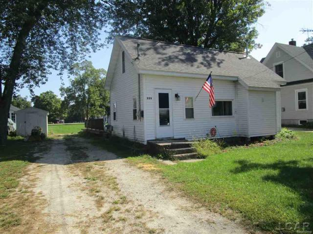 229 S Maple Street, Onsted, MI 49265 (MLS #56031360384) :: The Toth Team