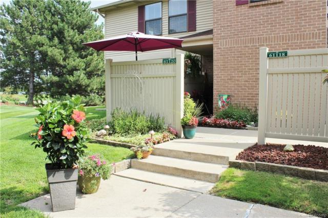 61120 Greenwood Drive, South Lyon, MI 48178 (#218091940) :: The Buckley Jolley Real Estate Team
